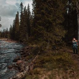 Summelfjället, Fulufjällets nationalpark, 2019