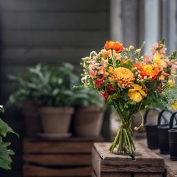 Produktfoto, Linköpings trädgårdshandel